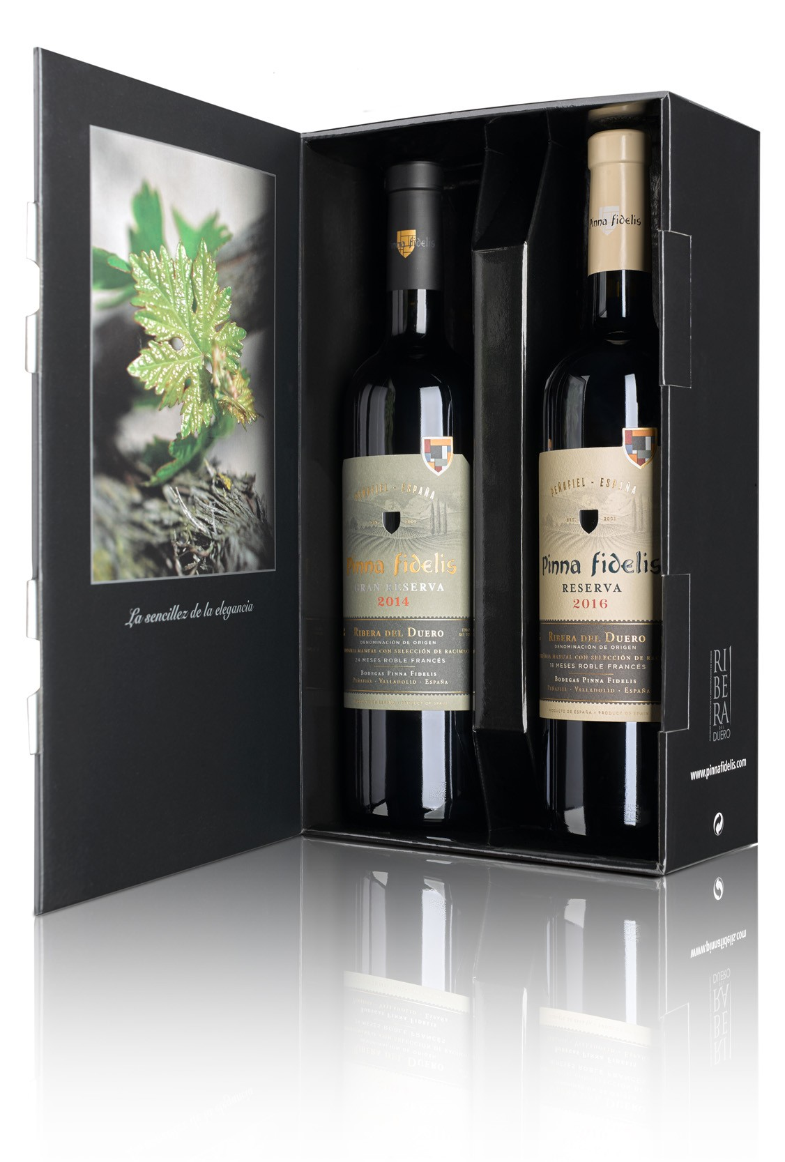 Roble Pinna Fidelis Duo pack